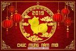 Share PSD chủ đề Tết 2019 - PSD chúc mừng năm mới 2019 cực kỳ chất lượng