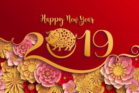 Vector Banner năm mới 2019 - Vector con heo tết  2019