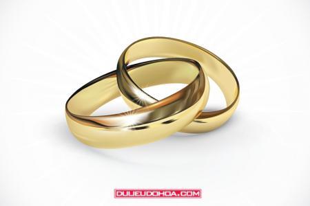 Vector nhẫn cưới - Nhẫn kết hôn vector AI mẫu 01