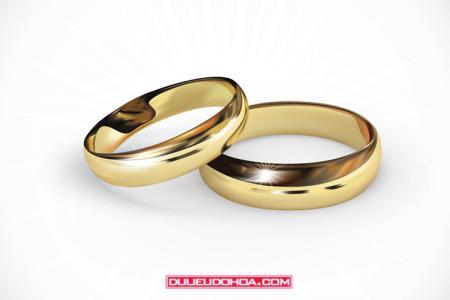 Vector nhẫn cưới - Nhẫn kết hôn vector AI mẫu 02