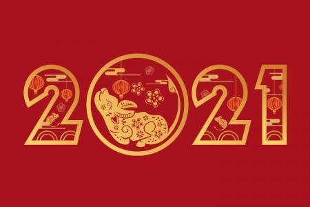Tải PNG số 2021 - Tài nguyên PNG tết nguyên đán Tân Sửu