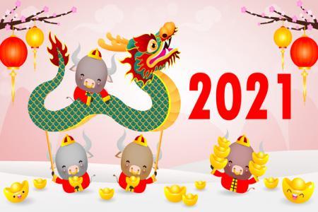 Free vector con trâu năm mới múa lân Tân Sửu 2021 đẹp