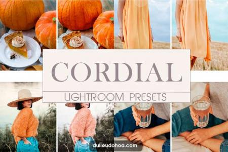 Cordial Preset Lightroom cho Desktop