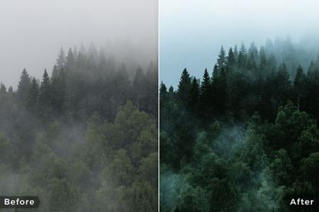 Tải Preset Lightroom Forest tone xanh cho Desktop