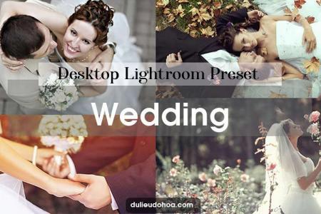20+ Preset Lightroom Wedding - Preset màu ảnh cưới đẹp (Desktop)